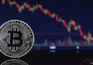 Bitcoin and its rivals offer no shelter from the storm