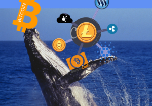 Crypto whales own almost half of the tokens from the biggest ever ICO