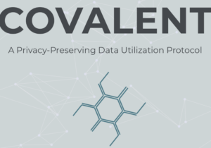 BlueHill and Covalent Partnership, Ushering in a New Age in Data Privacy Protection