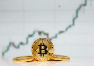 Battered bitcoin fans keep the faith, despite reality of 70% plunge in value