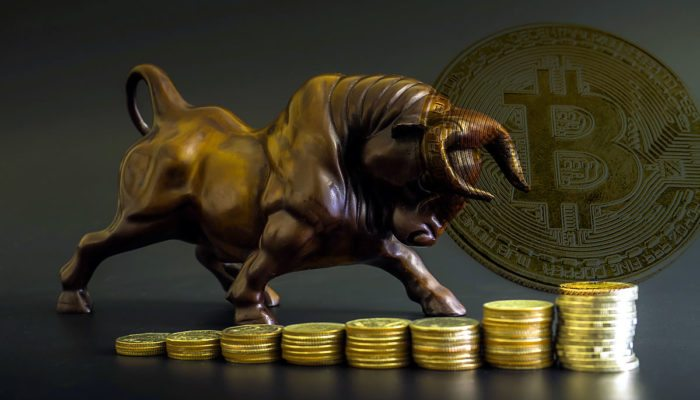 Bitcoin Dominance Nears 50% — The Start Of A Bull Run?