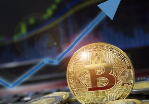 Cryptocurrency ventures face still more pain, says asset management firm