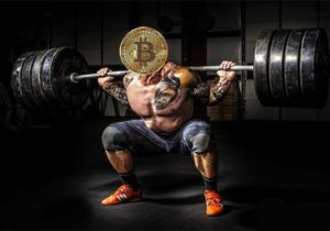 Bitcoin Flexes its Muscles as Cryptocurrency Market Tumbles to 2018 Low