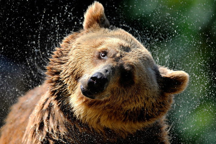 Here's what makes this crypto bear market different