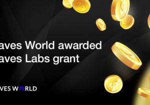 Waves World awarded $6,250 by Waves Labs for loyalty program