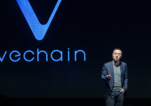 VeChain, DNV GL and Norway in a Box Collaborated to Implement a Superior Norwegian Product Platform