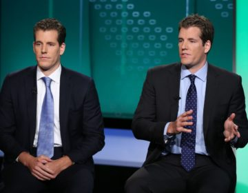 Winklevoss's Gemini Gives Access to Funds From Coins in Storage