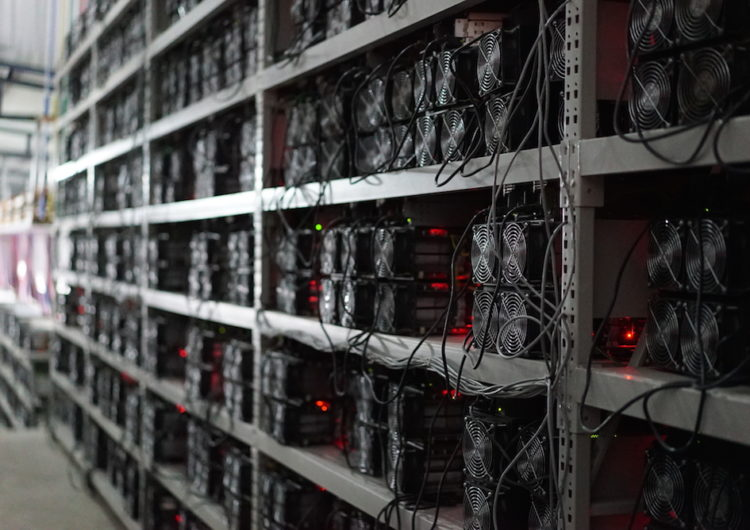 Why Crypto Processing Systems Is The Future